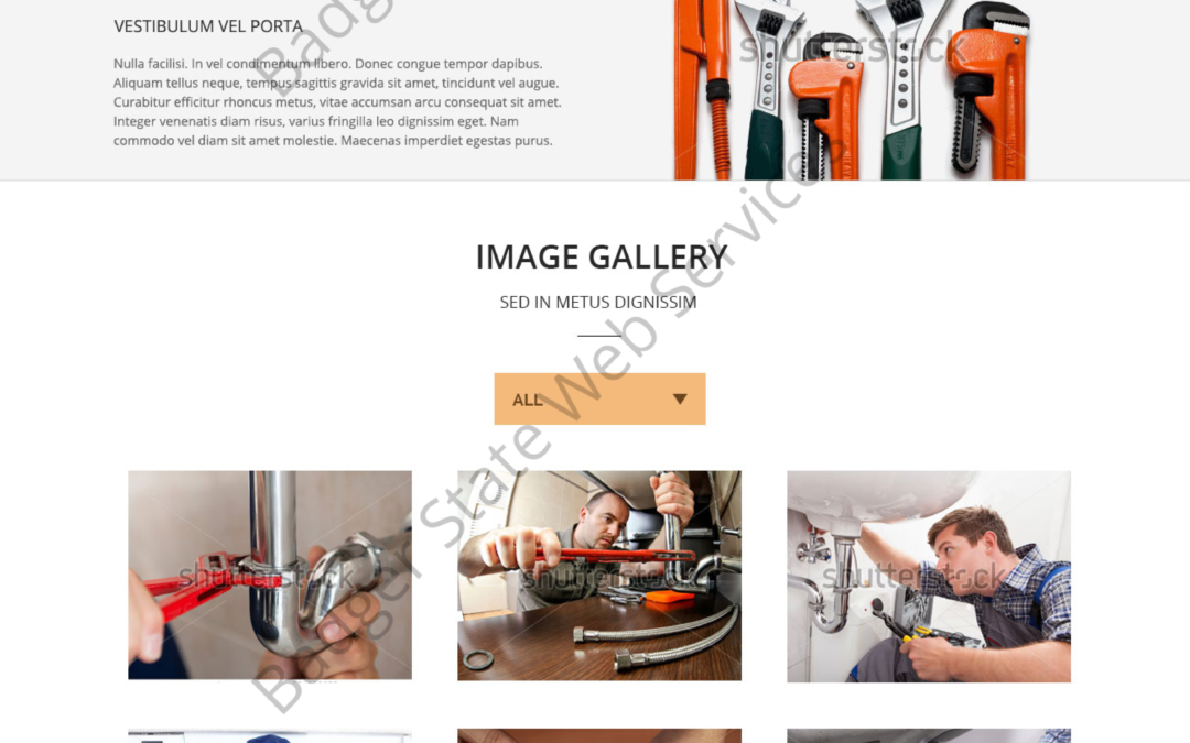 Plumbing Web Design Mockup-O