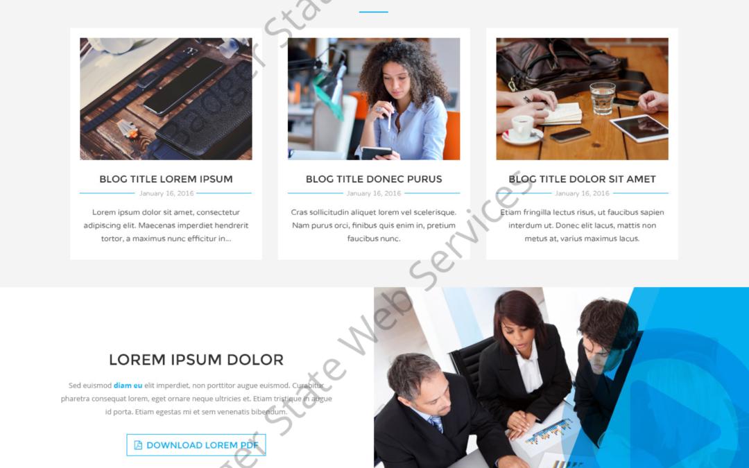SEO Web Design Mockup-T